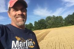 My favorite crop to harvest!  Blue skies, golden wheat, beautiful!